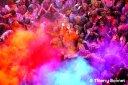 image festival colore la rue